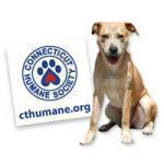 Free Humane Society Sticker