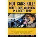 Free Hot Cars Kill Poster PETA
